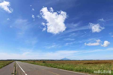 サロベツ原野の真ん中を横切る道
