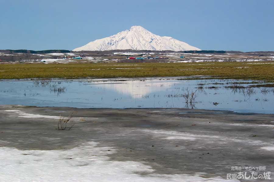 雪解けの頃(2005年4月12日)