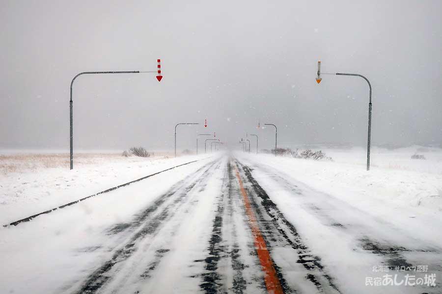 雪降る道道444号線(2019年1月10日)