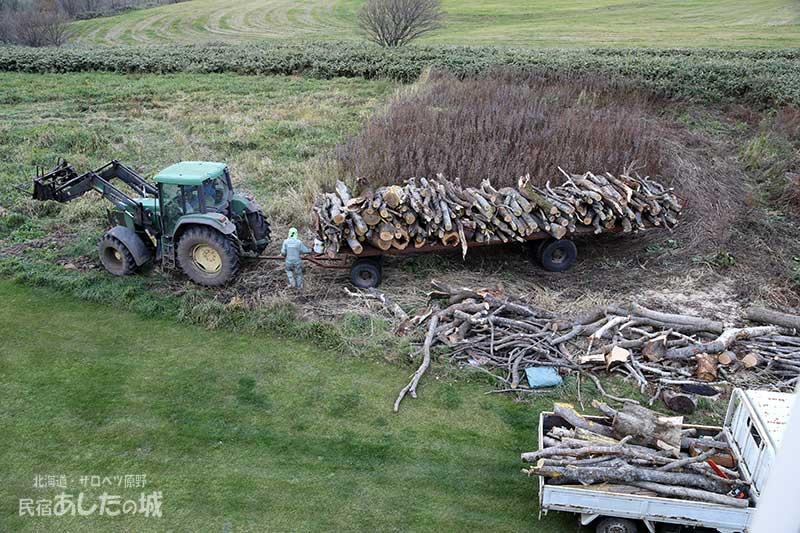 これは近所の酪農家が運んでくれた原木