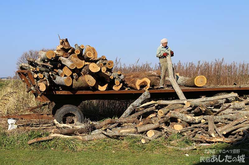どんどん増えていく薪の原木