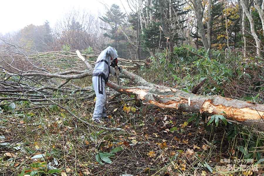薪の原木を倒す
