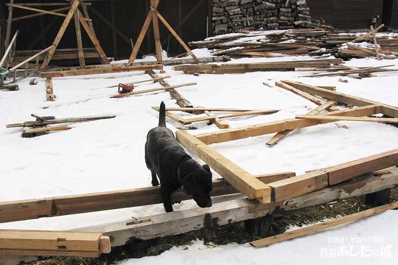 03骨組みが大風で… | 廃材で作る物置小屋