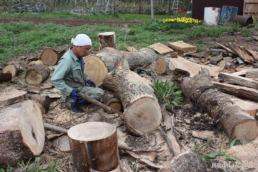 原木を薪にする