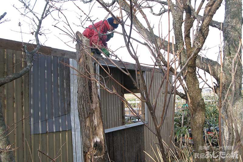 屋根のトタンを張る