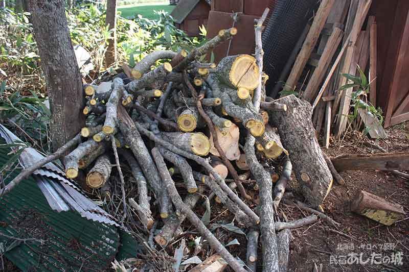 倒した木は整理して