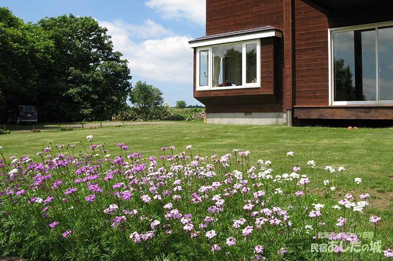 花壇ブロックの花