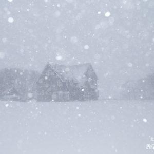 風もなく深々と降る雪