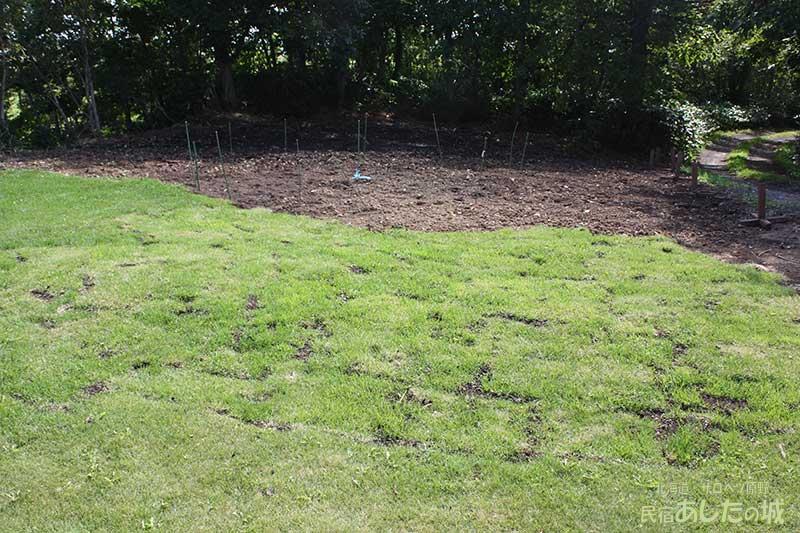 芝生を敷き詰めたところ
