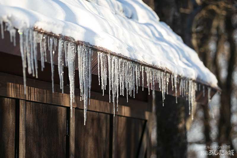自転車小屋の氷柱