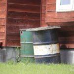 スズメが抱卵しているドラム缶