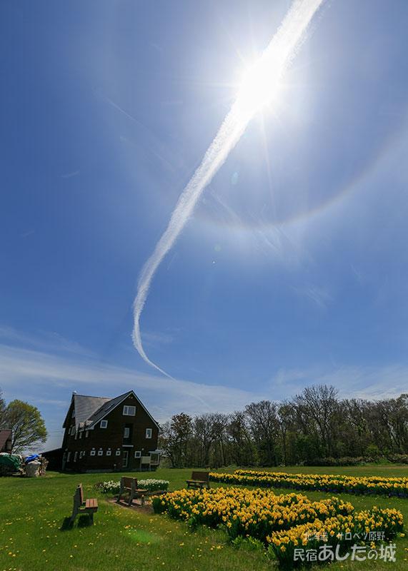 裏庭から宿と日暈と飛行機雲
