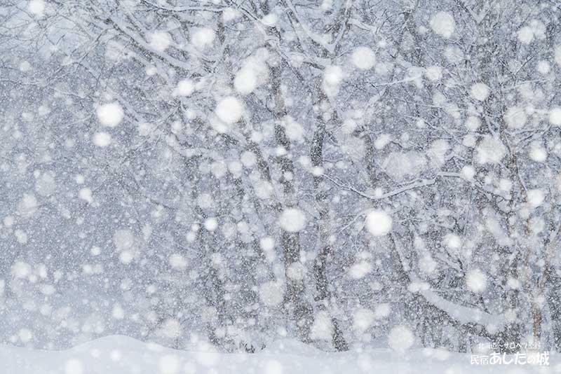 風がなく大雪が降っている状態