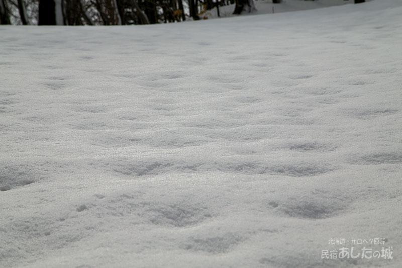 ボコボコになってきた雪面