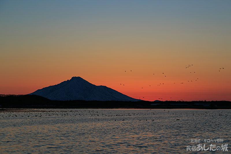 春水と利尻と水鳥の夕焼け