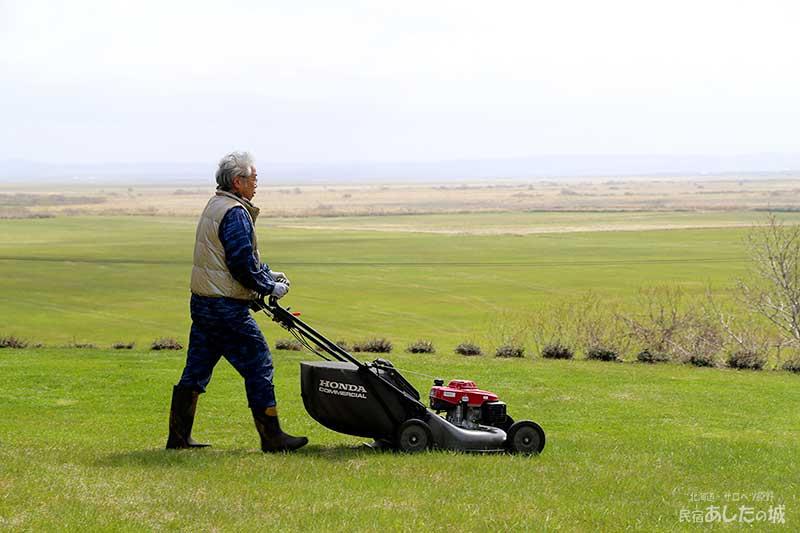 初の芝刈り