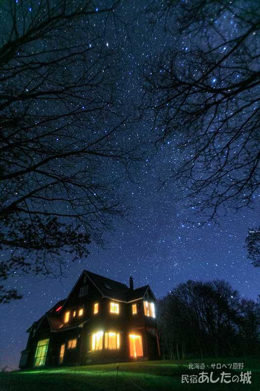 木立と星空