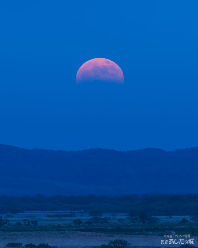 皆既月食の日(19時10分)