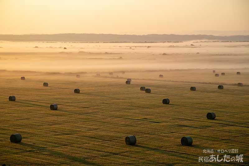 サロベツ原野の朝霧と牧草ロール