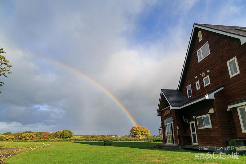 桑の木から虹ビームが~